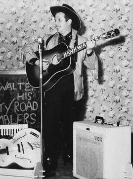 Hank Walters
